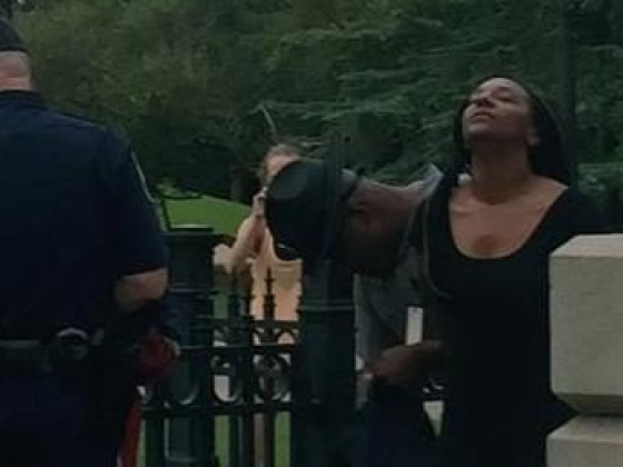 Black Woman Removes Confederate Flag In Front Of South Carolina Statehouse